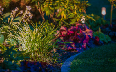 3 Reasons to Hire a Landscaper to Install Your Outdoor Lighting